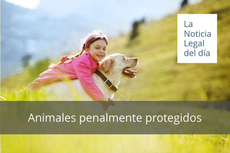 Animales penalmente protegidos