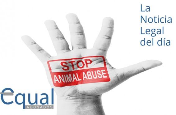 Pena de prisión por maltrato animal.